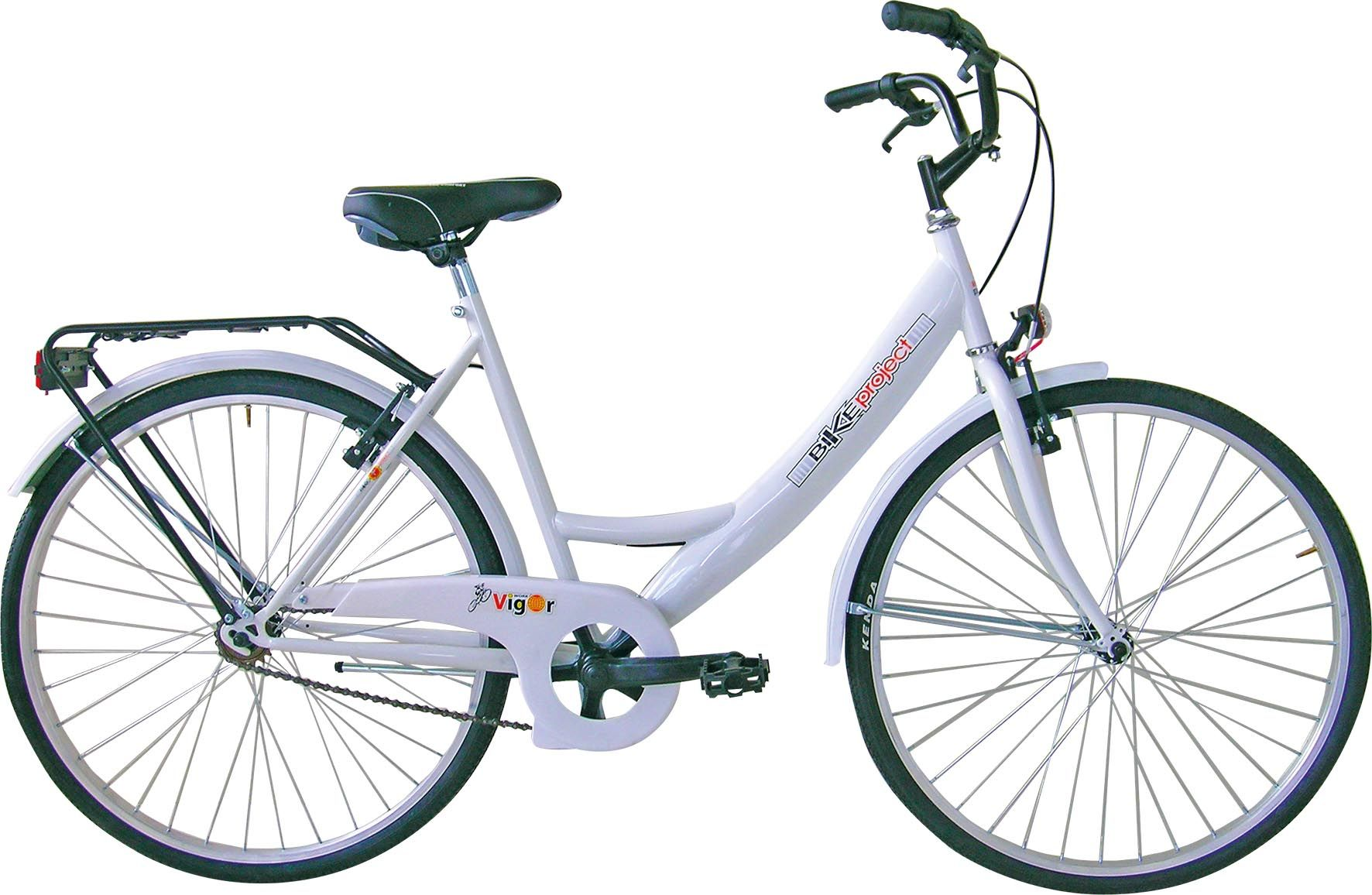 Bicicletta Olanda